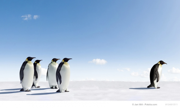 Besser gutes Content Marketing nach Penguin 4.0 Update